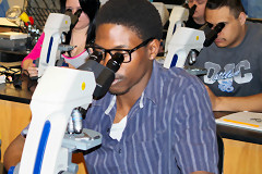 students look through microscope lenses